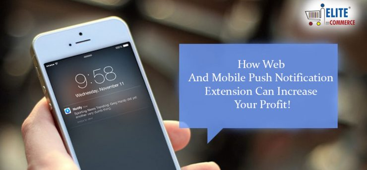 Web and Mobile push notification to increase profit